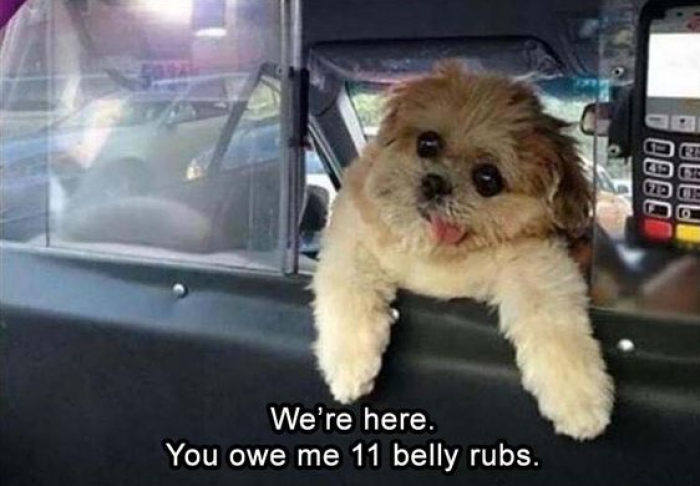 Give him the rubs, before he calls the police.