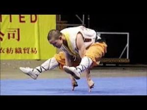 Amazing People Skill Compilation - Best Martial Arts Edition 2017