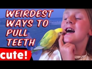 The Weirdest Ways To Pull Teeth | Best Fail Compilation