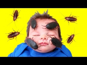 Bad Silicone Baby Cockroach Attack!